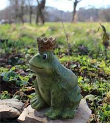 Froschkönig auf Stein sitzend