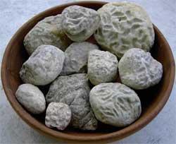 Steine in einem Topf