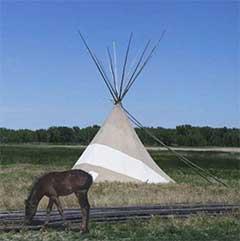 Pferd grast vor einem Tipi
