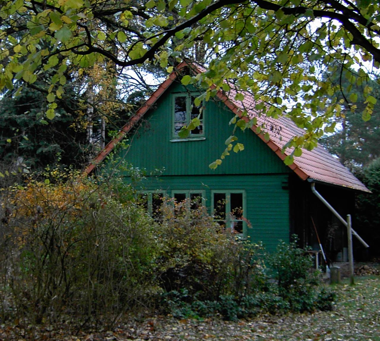 Kleines grünes Holzhaus